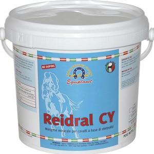 Electrolitos Reidral + CY 1kg
